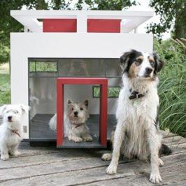 cubix эксклюзивная будка для собаки