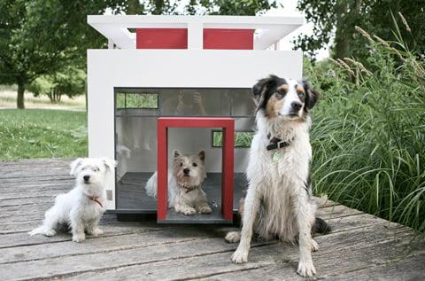 Особняк для собаки Cubix от Best Friend's Home