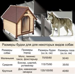 Розміри будки для собаки