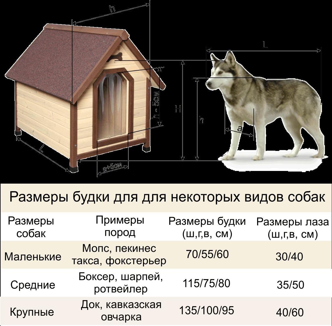 Собачьи будки своими руками фото чертежи