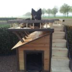 двухэтажная-будка-для-собаки17