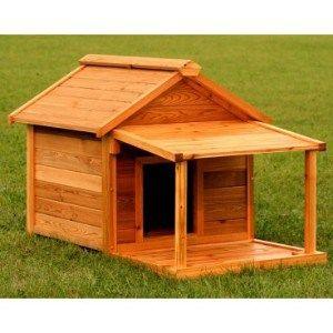 Будка для собаки з відкритою верандою | фото