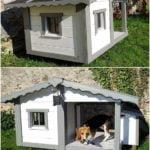 собачья-будка-с-окном2