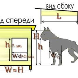 классификация будка для собаки
