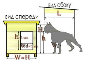 Классификация собачьих будок