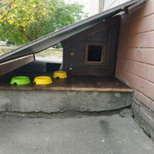 Встраеваемая будка для котов